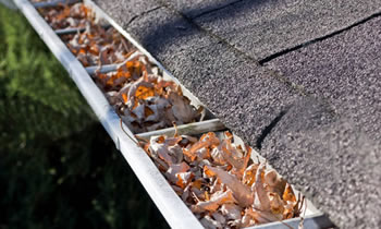 gutter cleaning Greenville